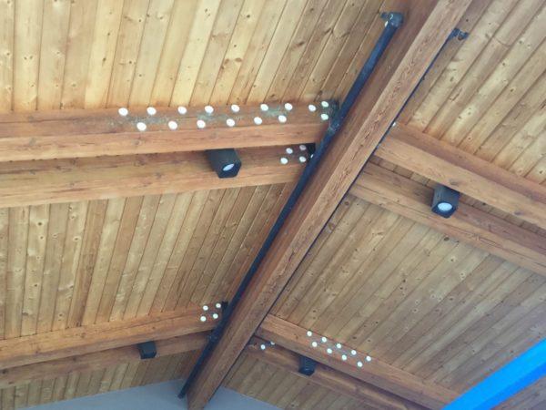 optical gel wood ceiling mud swallows 1